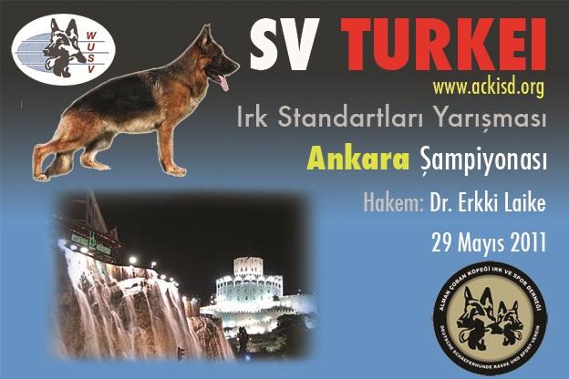 Alman Kurdu Ankara Şampiyonası