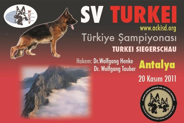 2011 Türkiye Şampiyonası